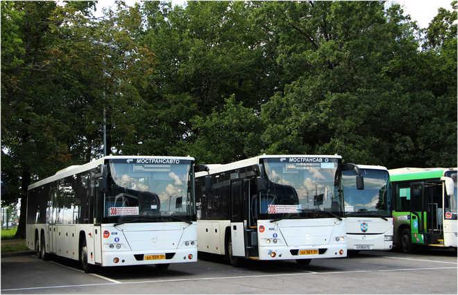 автобусы 308
